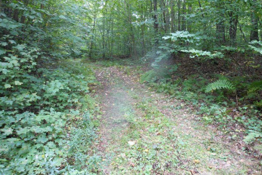 interior trail