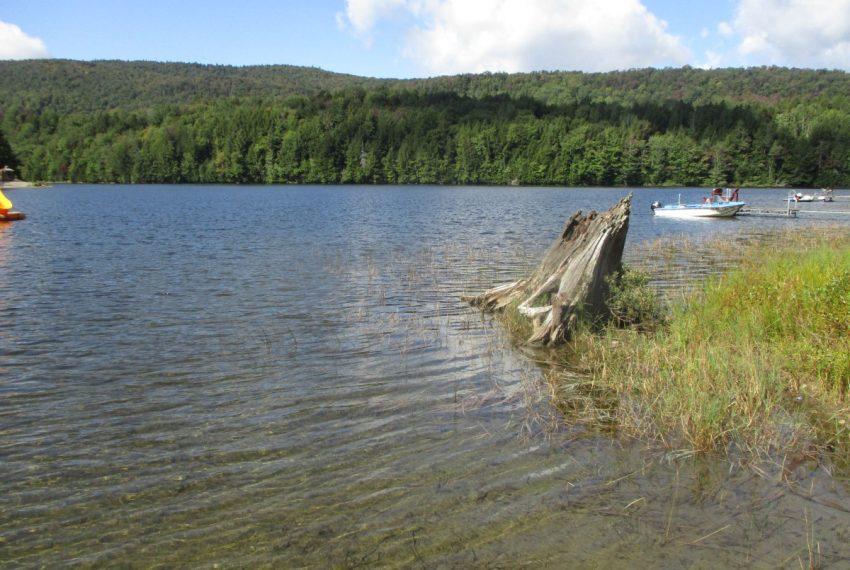 South Pond