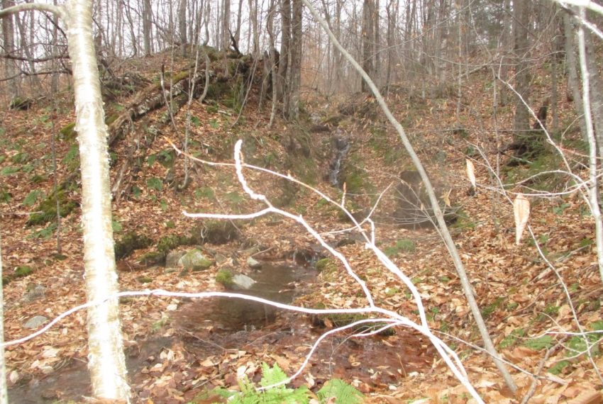 brook coming thru the rocks