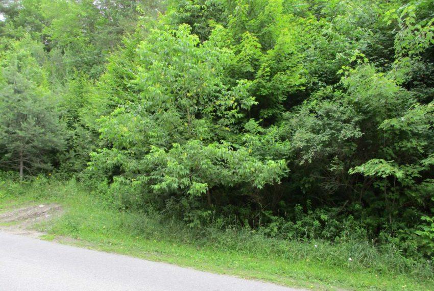 July road side