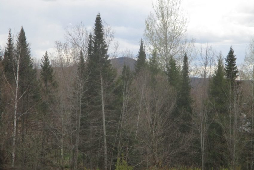 View towards Bean MT in the SE
